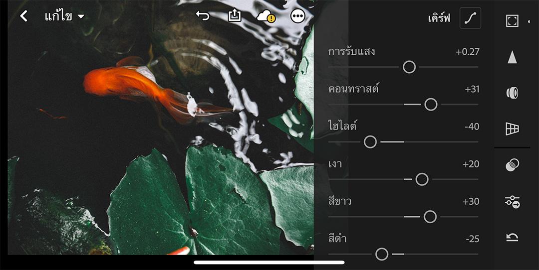 Lightroom-Film-Fish-basin-06
