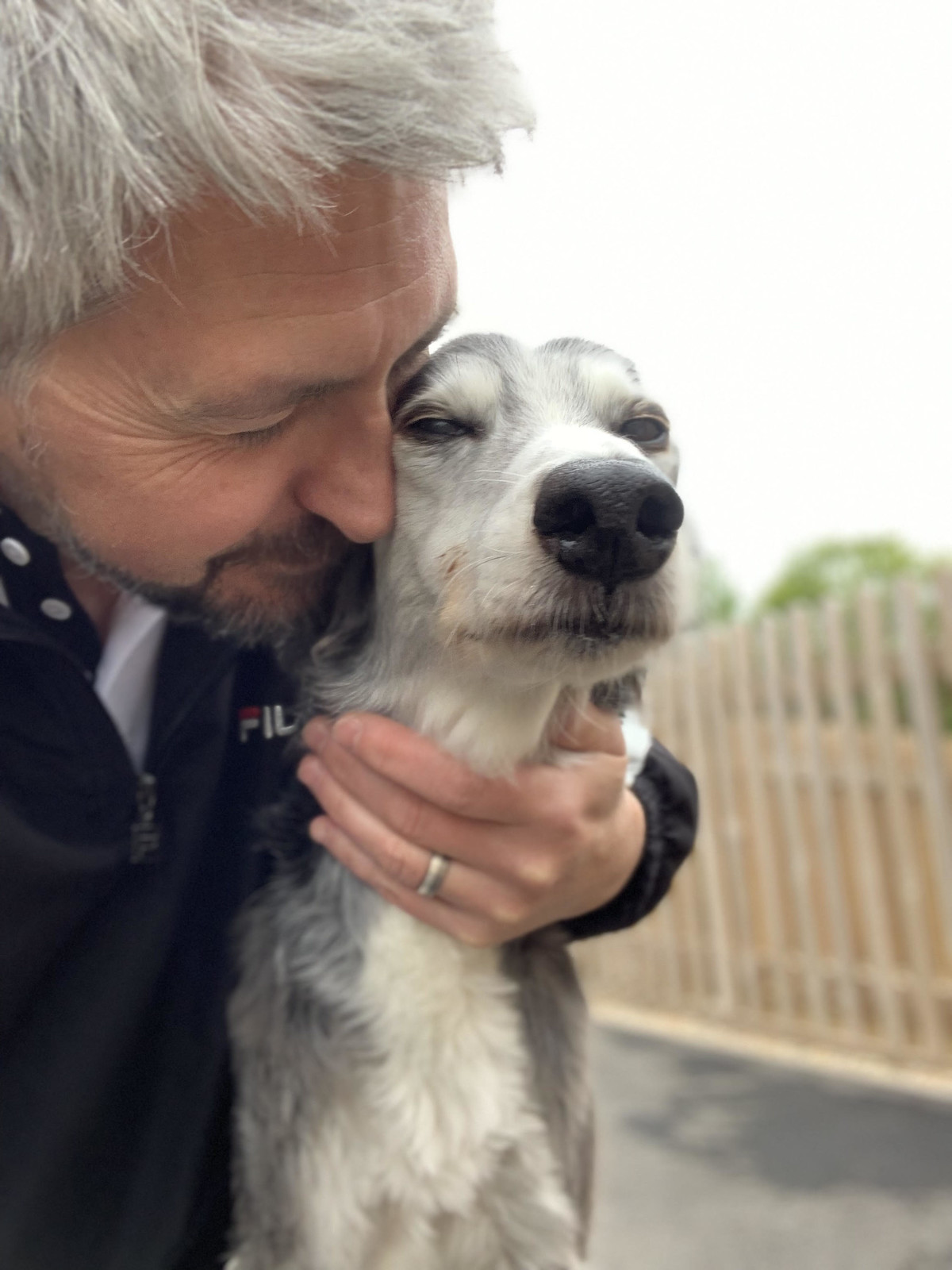 Riley the Lurcher 2005-2019