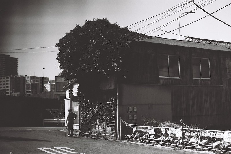 Leica M3+Carl Zeiss Planar50mm f2 0+FUJIFILM NEOPAN100 ACROS月島の蔦の絡まる家