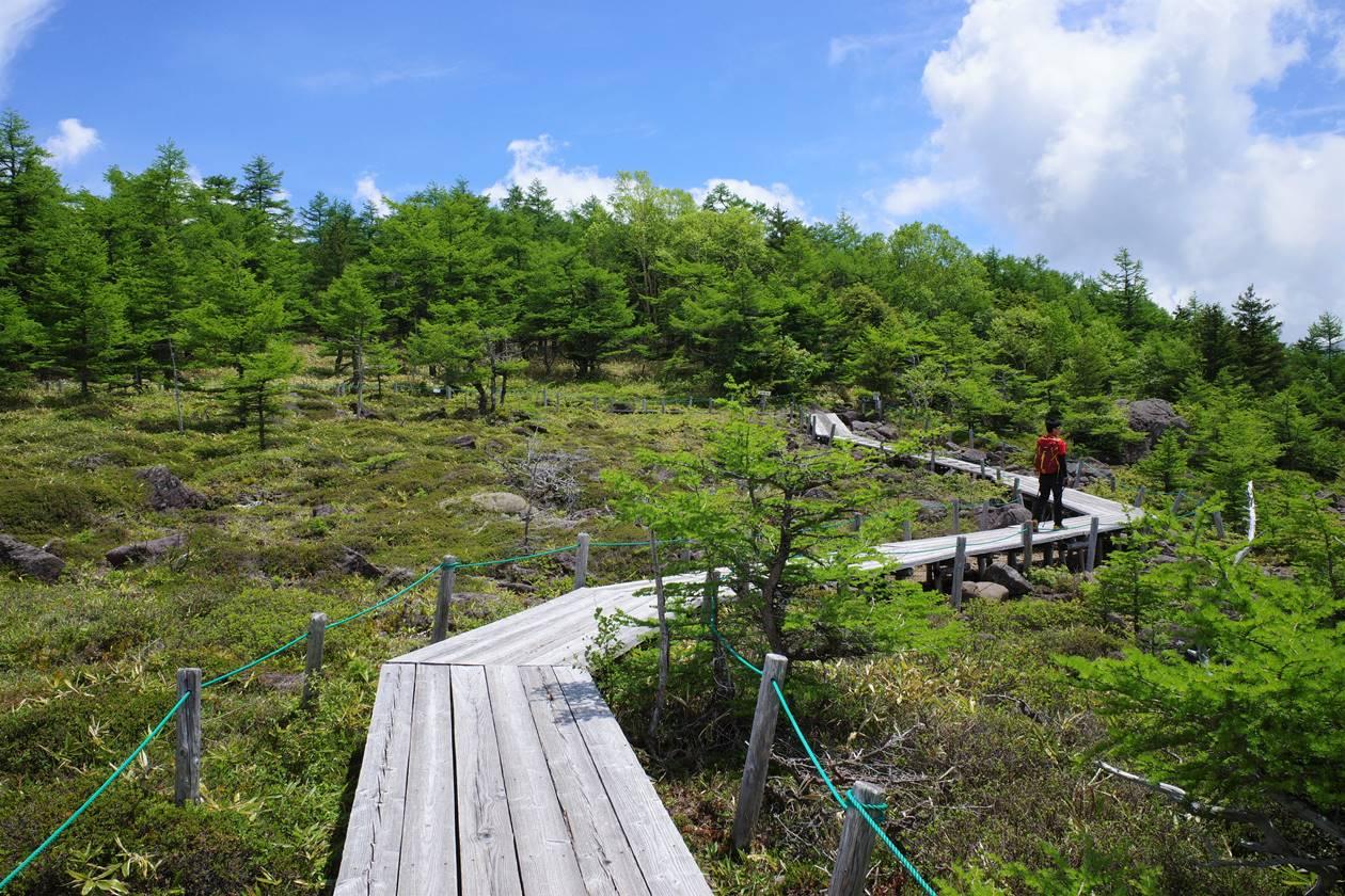 池ノ平湿原 ハイキング