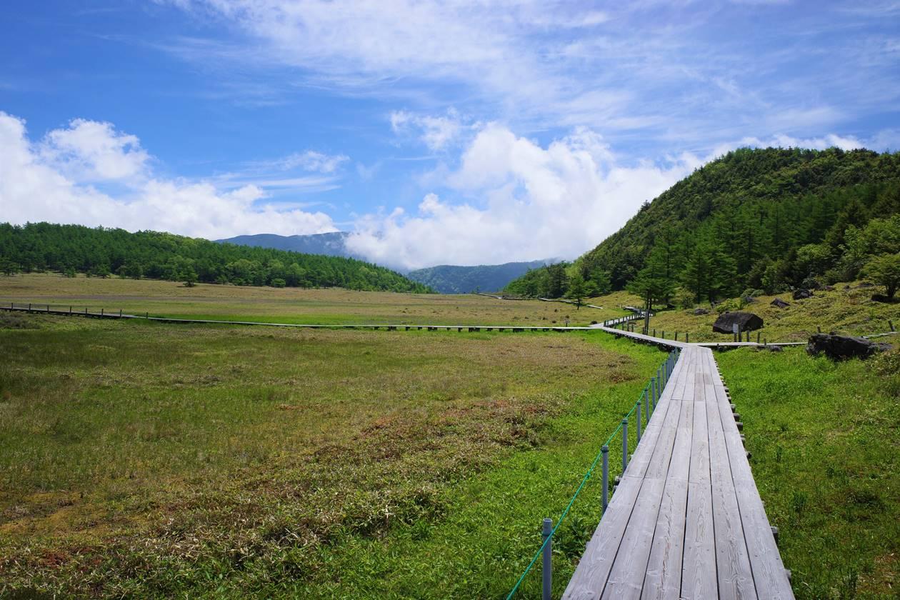 池ノ平湿原の木道