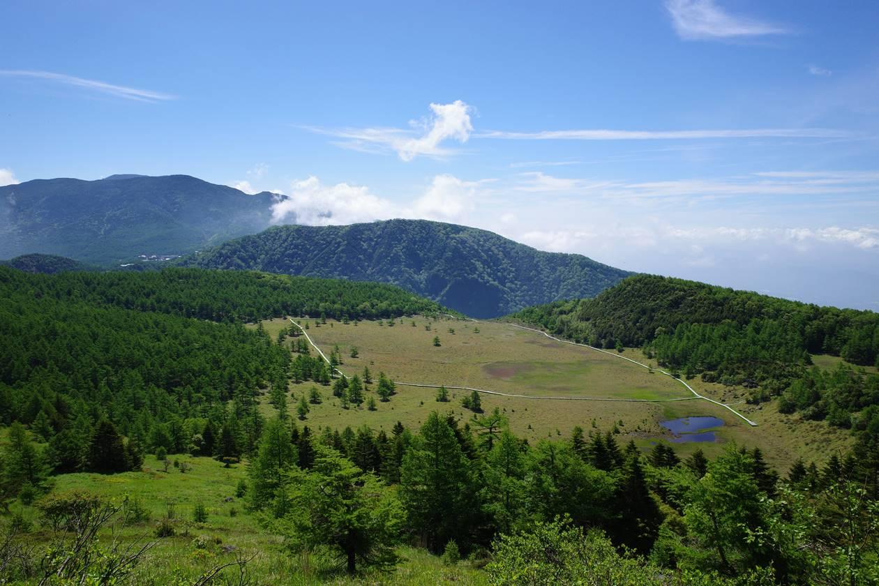 雲上の丘からの池ノ平湿原