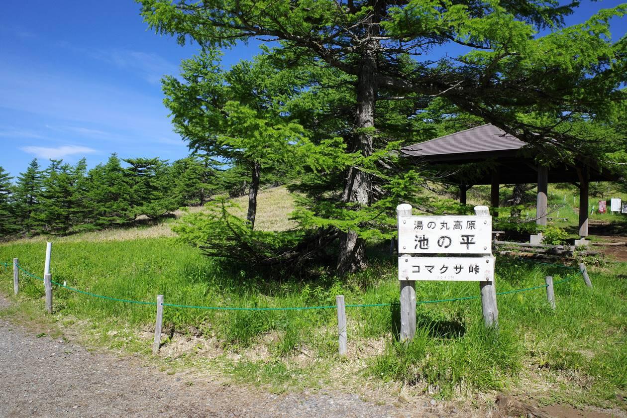 湯ノ丸高原・池ノ平湿原