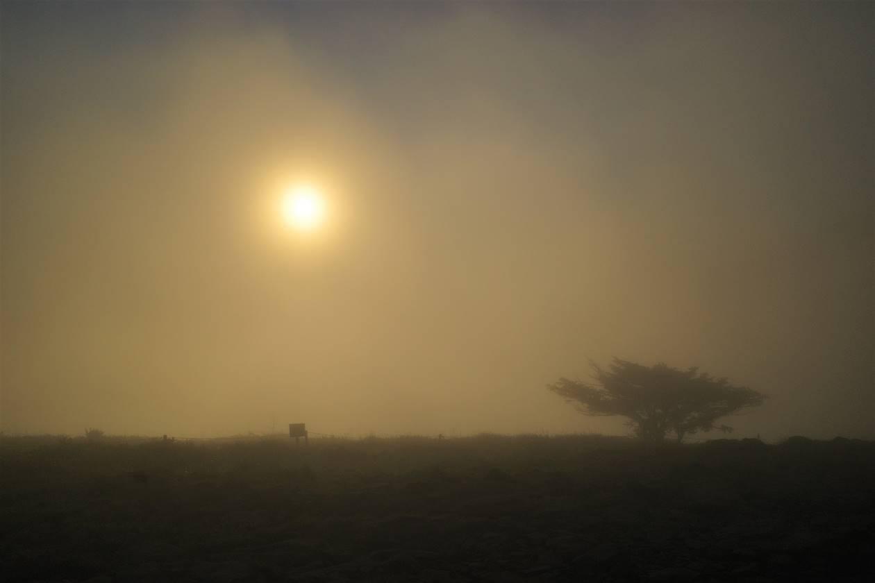 幻想的な霧と朝日