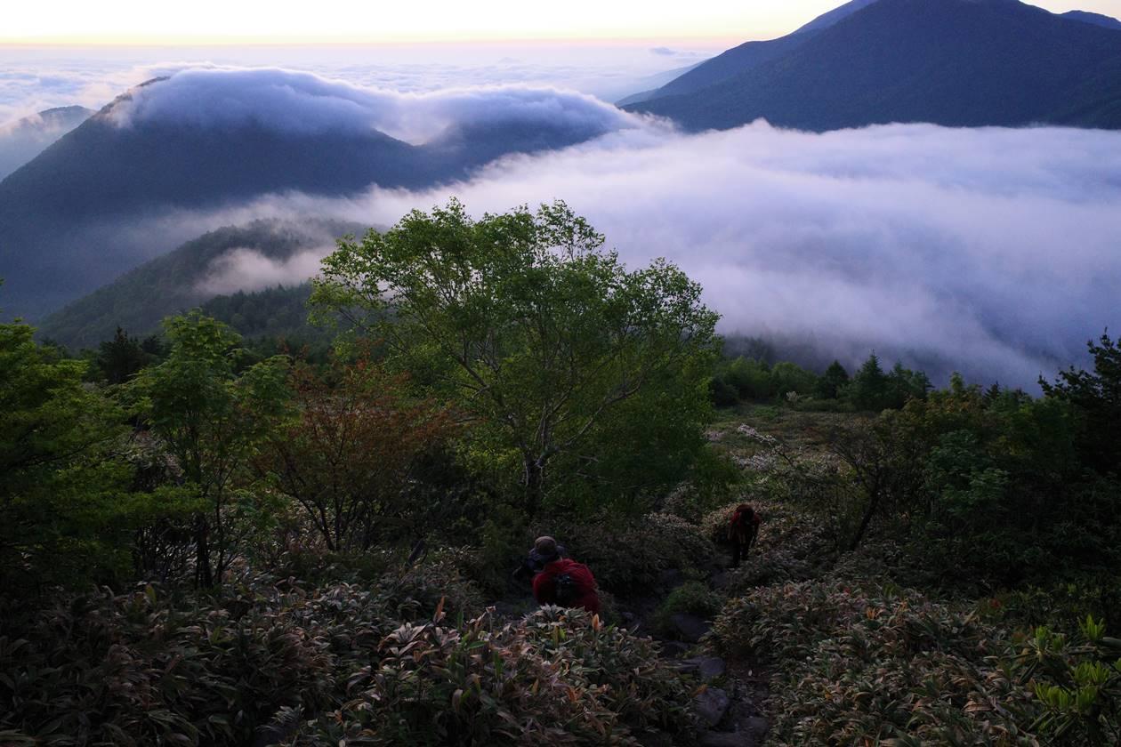 湯ノ丸高原 雲海登山