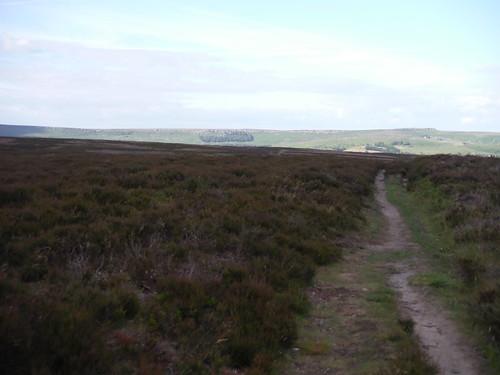 Across Offerton Moor towards Stanage Edge SWC Walk 343 - Hope to Hathersage or Bamford (via Castleton)