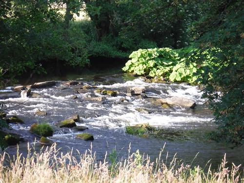 River Derwent SWC Walk 343 - Hope to Hathersage or Bamford (via Castleton)