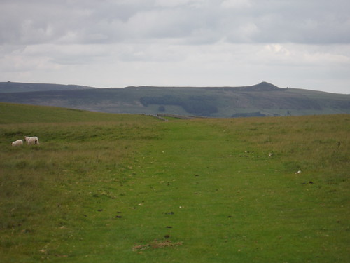 Across Pastures, direction Win Hill SWC Walk 343 - Hope to Hathersage or Bamford (via Castleton)