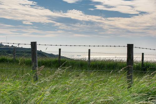 dungenessnuclearpowerstation justapartofourlandscape fences earlymorning hastingscountrypark clouds sunshine grass thatsthecoastguardstationontheleft
