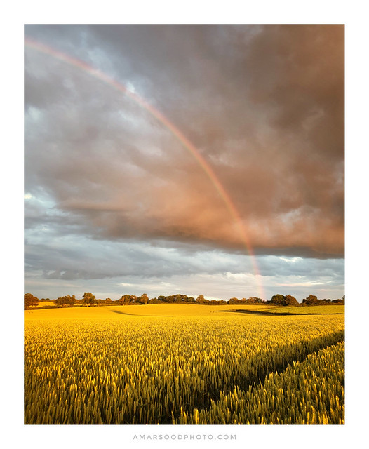 The Gold at the End of the Rainbow