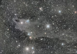 Dark Shark Nebula