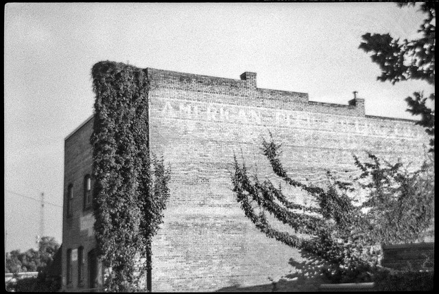 old industrial architecture, brick, ivy-covered II, River District, Asheville, NC, Bencini 24S, Bergger Pancro 400, HC-110 developer, 7.1.19