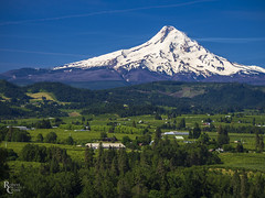 Hood River Valley in Late Spring