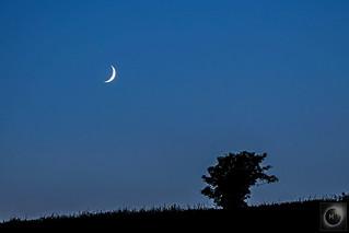 13% Waxing Crescent Moon 05/07/19