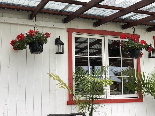 red window frame and red flowers