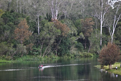water trees boat people brisbaneriver collegescrossing outdoor outside winter nature scene ipswichqueensland australia landscape