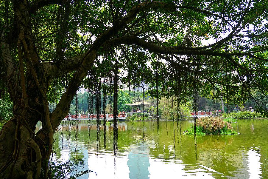 Taipei Zhongshan Park