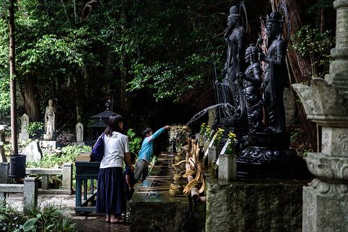 東大寺別院阿弥陀寺あじさい祭り 2019 #5ーAmida-ji Temple Hydrangea Festival 2019 #5