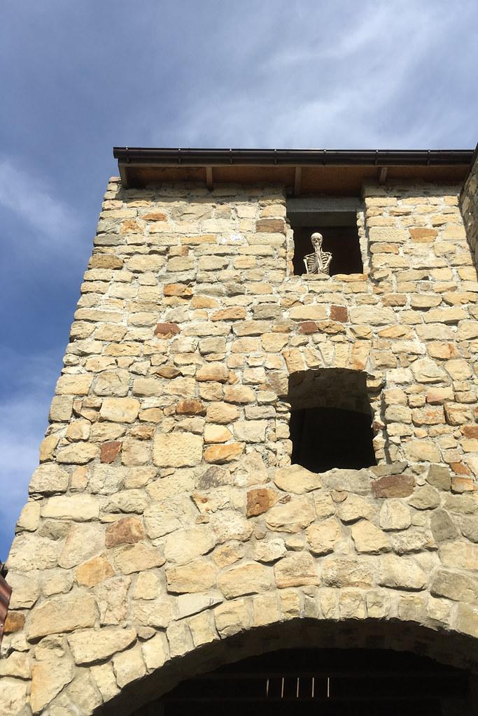 Mieszkaniec zamku / Castle resident
