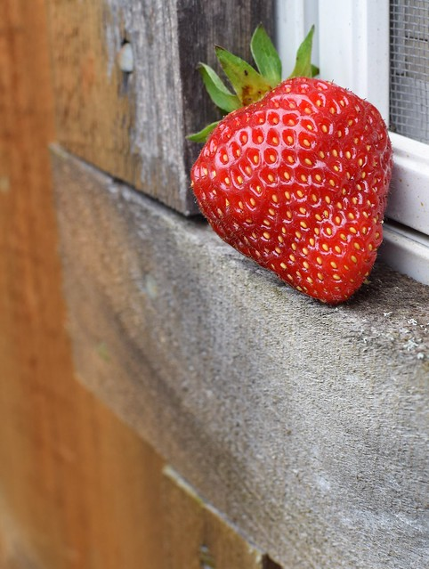 Cornered Strawberry