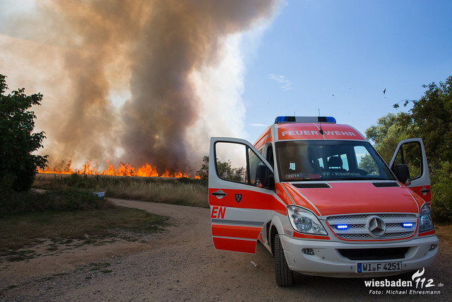 Flächenbrand Hochheim/Kostheim 05.07.19