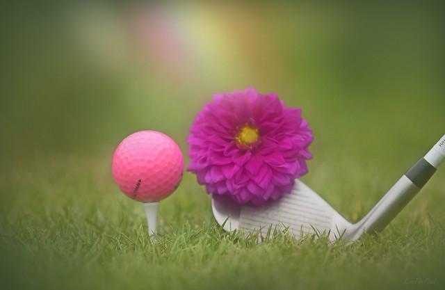 Golf Girl...