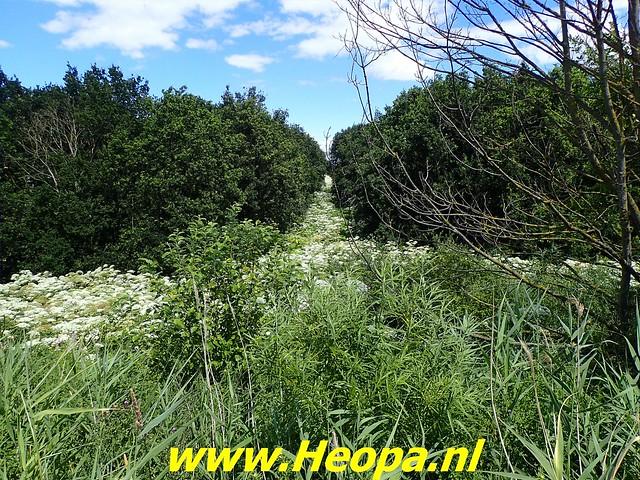2019-07-02          Almere deel 2   13 km (8)