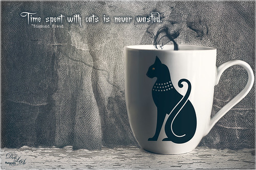 Image of a cat coffee cup in front of lace curtains