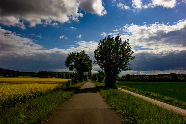 Bicycle path Rosendahl-Darfeld, Germany