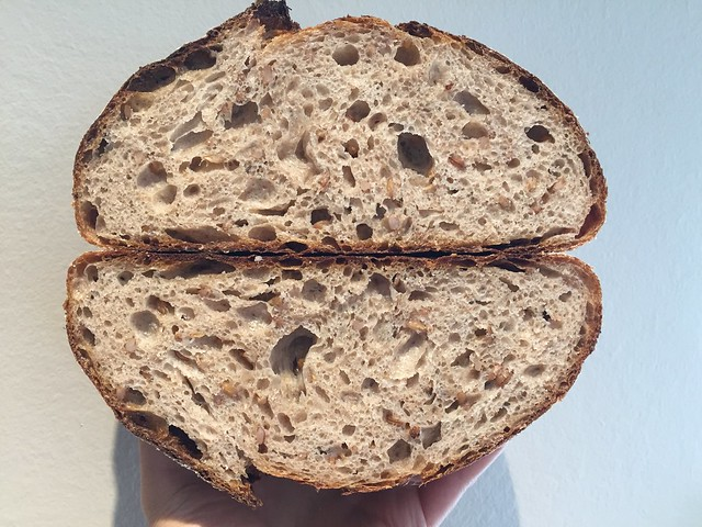 Sprouted Rye