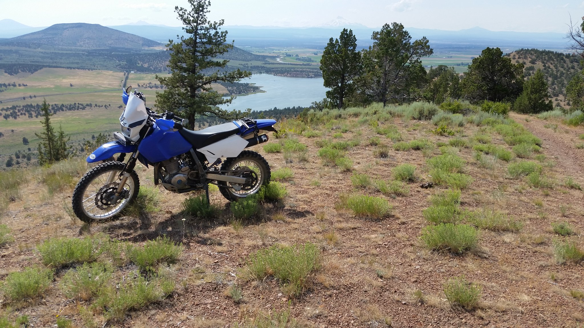 the DR650 thread | Page 10244 | Adventure Rider
