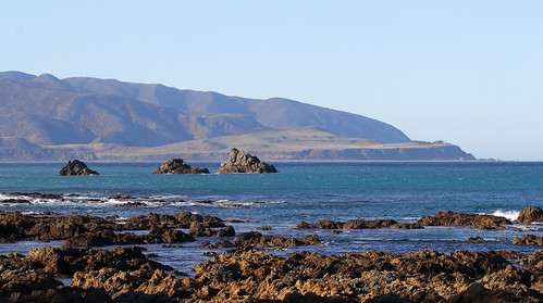 <p>Looking across the rugged entrance to Wellington Harbour and across to Baring Head, from Owhiro Bay.</p>