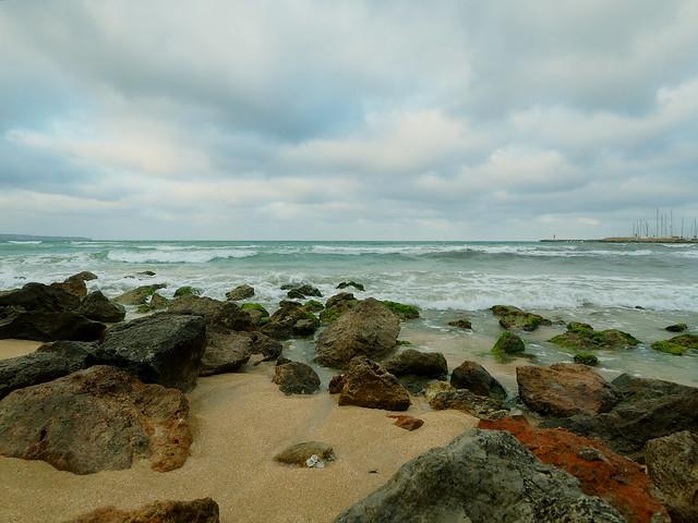BEACH WITH STONES P6150096_1