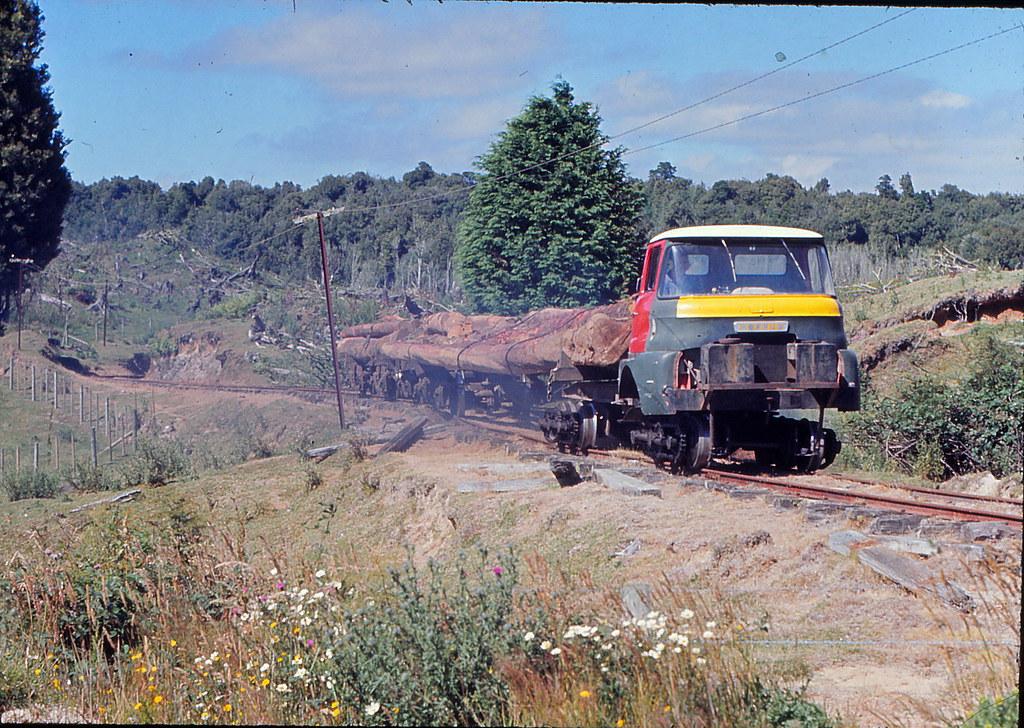 ST Mamaku tram still climbing on a reverse curve Jan 1974