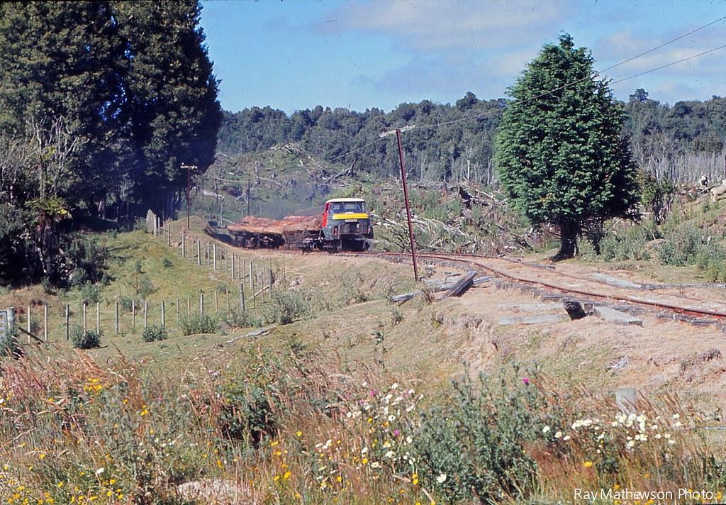 ST Mamaku tram hill climbing Jan 1974