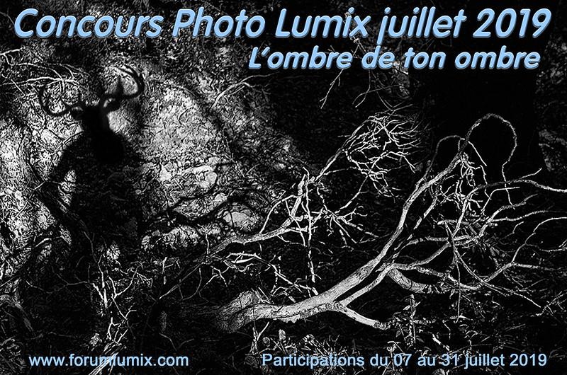"""Concours de juillet """"L'OMBRE DE TON OMBRE"""" 48218691226_93a2deb424_c"""