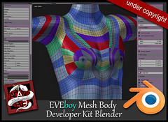developer-KIT-EVEboy-body
