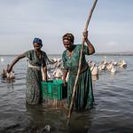 Lake Tana, Ethopia