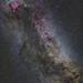 Cygnus Wide