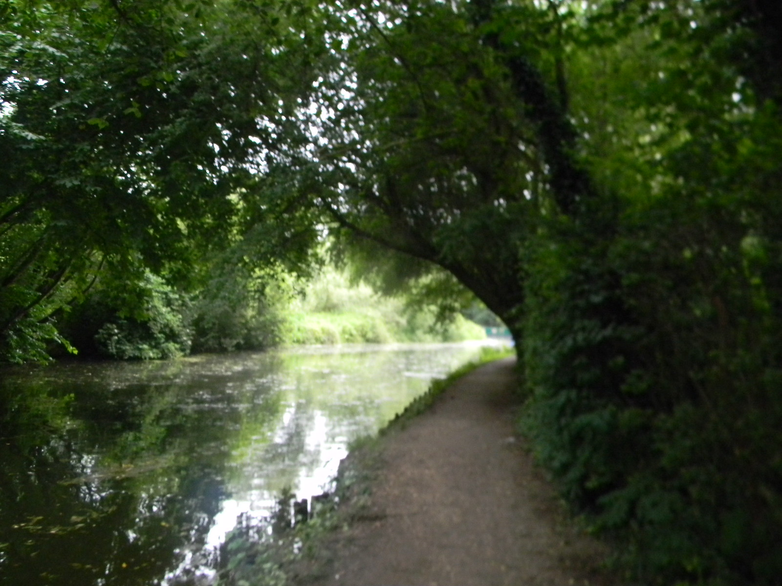 The Stort Sawbridgeworth to Bishops Stortford