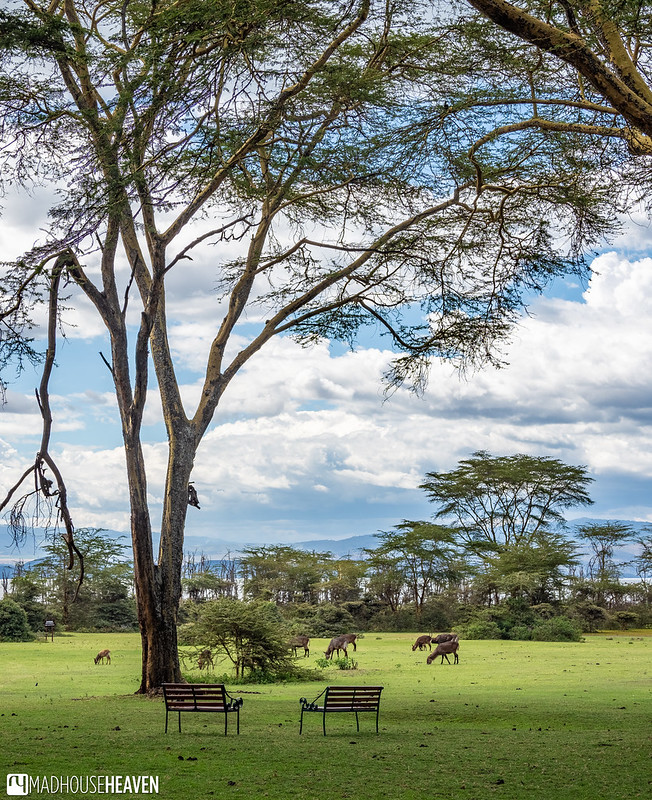 Kenya - 2298-HDR