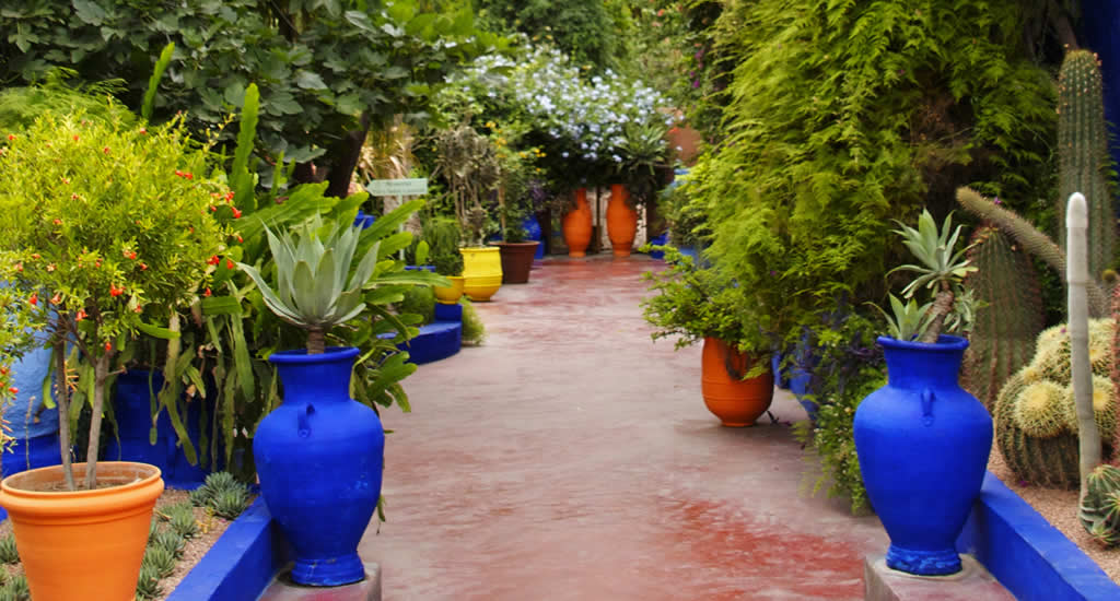 Jardin Majorelle, Marrakech | Mooistestedentrips.nl