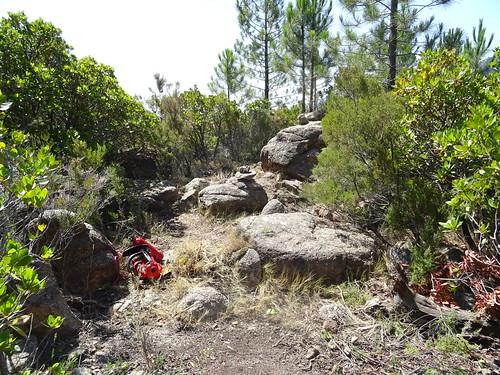 Le chemin de Paliri à travers le plateau sous Punta Russa : après les travaux