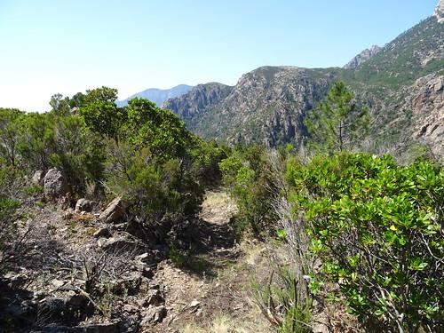 Le chemin de Paliri à travers le plateau sous Punta Russa après les travaux