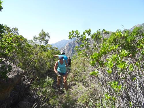 Le chemin de Paliri à travers le plateau sous Punta Russa : les travailleurs