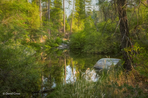 reflectingpond california landscape nevadacity lightroom6 hirschmantrail canon5dmarkiii reflections canonef35mmf2isusm forestpond topazstudio forestsetting nevadacounty wetweatherpond
