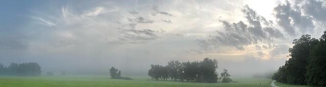 48223269801 588e4e17a7 z Foggy morning