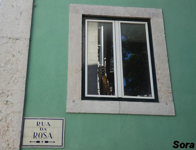 Lisbonne8