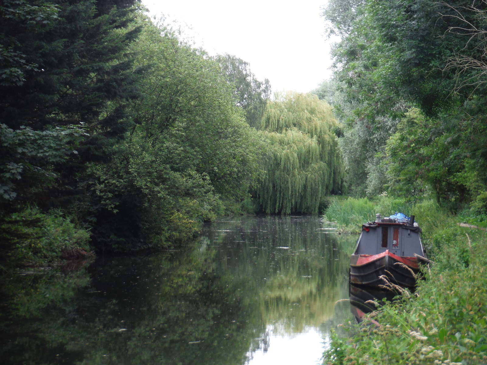 Willow and Barge, Twyford Bury, Stort Navigation SWC Walk 210 - Sawbridgeworth to Bishop's Stortfort (via Henry Moore Foundation)