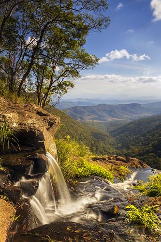 australia queensland lamingtonnationalpark moransfalls water mountain rainforest trees valley